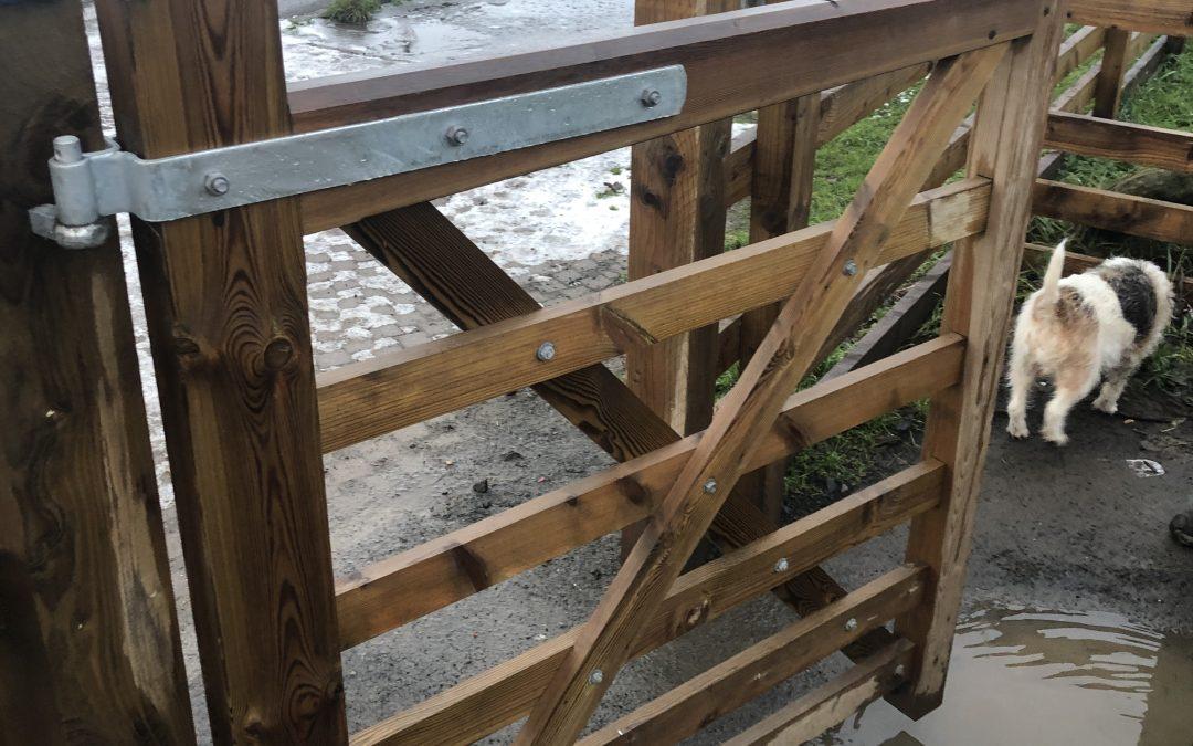 Dog Proof Gate Spring